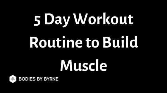 5 day workout routine to build muscle